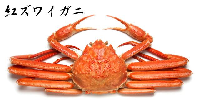 紅ズワイガニ