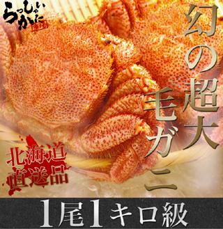 【特選3kgセット】タラバガニボイル脚(特大Lサイズ)